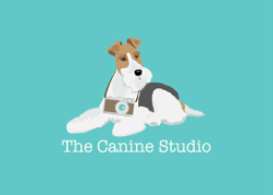 the canine studio